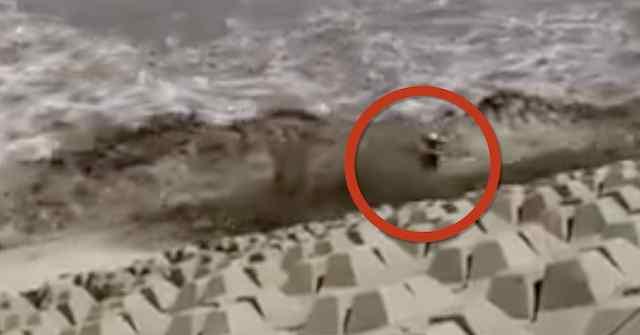阎王都不收你!男子钱塘江观潮被卷走11秒后又被拍回岸边