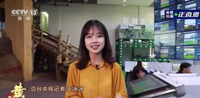 央视美女记者走红 高颜值王冰冰