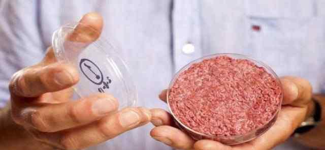 豆腐成为美国热门肉类替代商品 为什么要用豆腐替代肉类