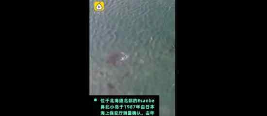 日本一小岛消失 哪座岛屿有什么影响