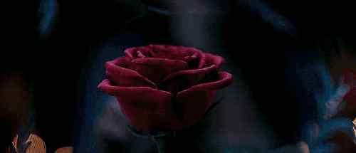 美女与野兽 《美女与野兽》:爱情始于套路,却忠于人品