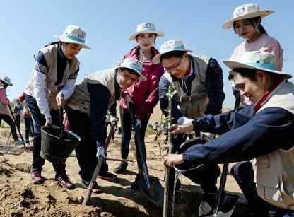 大韩航空连续第十年在内蒙古库布其沙漠植树造林