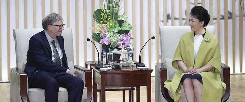 彭丽媛会见比尔盖茨,双方进行了思想交流