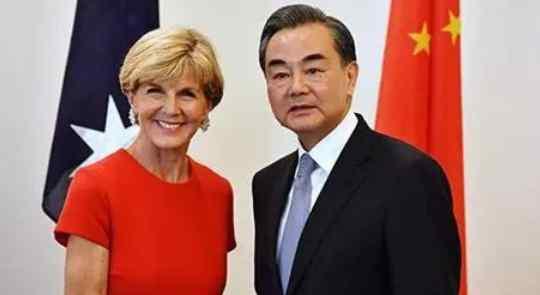 王毅会见澳外长,称本次并不是官方双边会议
