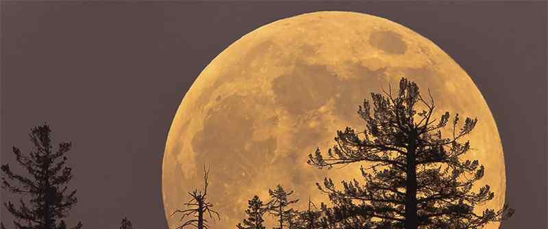 派遣人类定居月球,预计2028年之前让人类重返月球