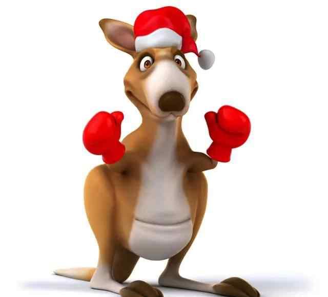 幼儿园大班健康教案 幼儿园大班体育教案:小袋鼠跳跳跳