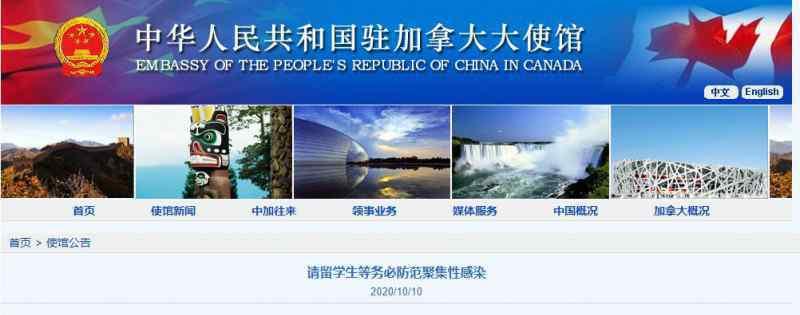 中国留学生在加拿大发生聚集感染 到底是怎么感染