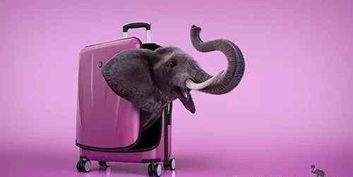 爱华仕拉杆箱 厉害了!爱华仕箱包创意广告片来袭 这个创意你想到了吗