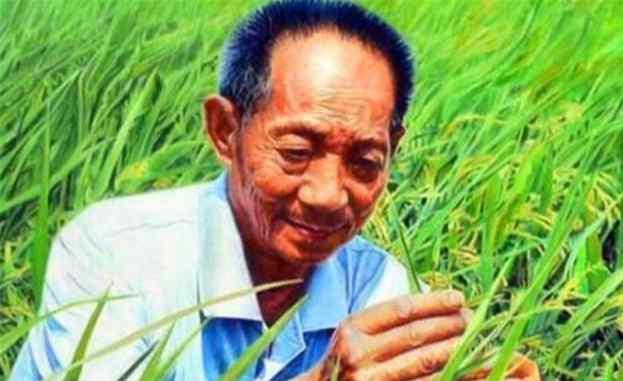 """""""杂交水稻之父""""袁隆平,他的3个儿子,他们都是做什么的?"""