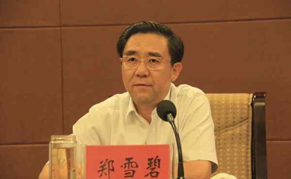 承德原书记郑雪碧申诉被驳回,民企老板为当人大代表向其行贿