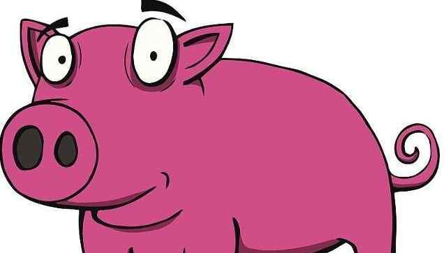 生肖猪2019年本命年刑太岁有何凶灾?周易精解属猪人2019年运势
