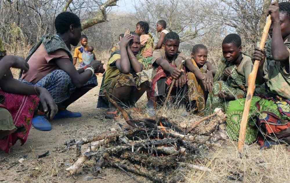 肯尼亚单亲妈妈煮石头汤哄孩子 事件的真相是什么?
